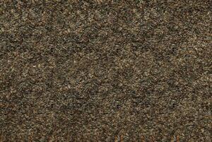 401 Nyjer Seed
