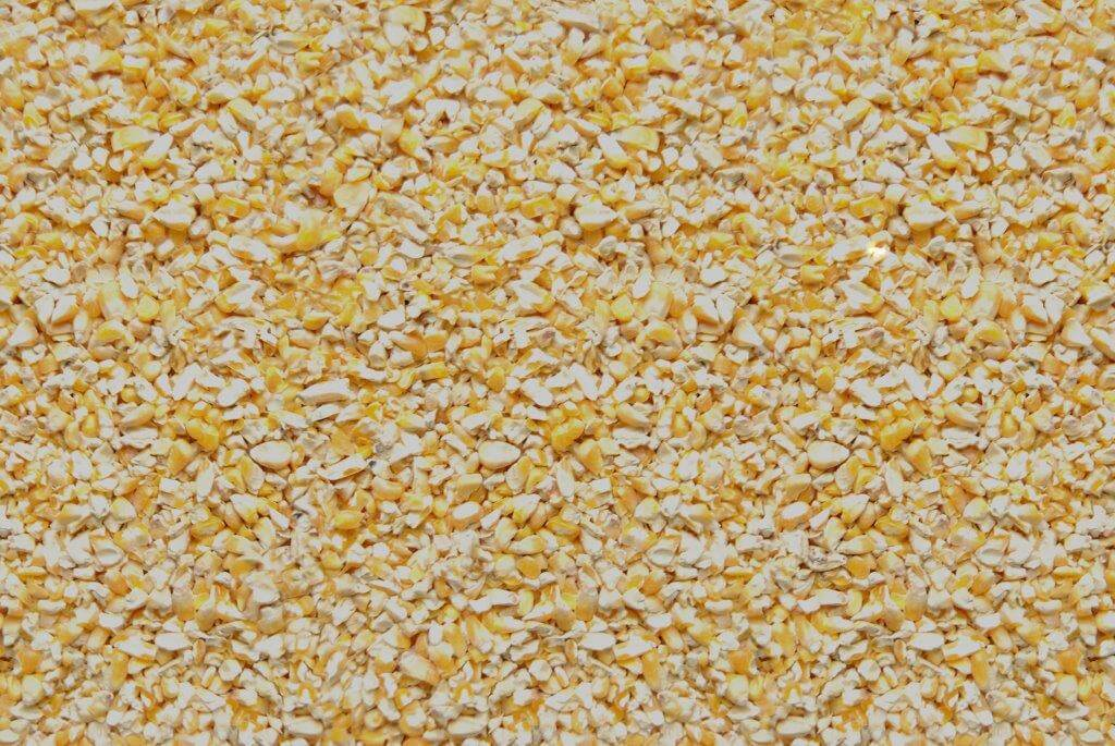 419 Cracked Corn Seed