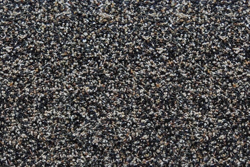 421 Finch Feast Seed