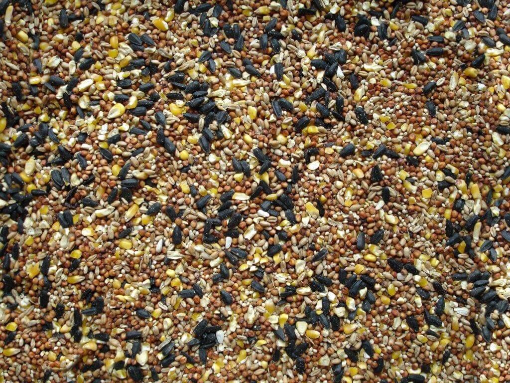530 Wildbird Mix Seed