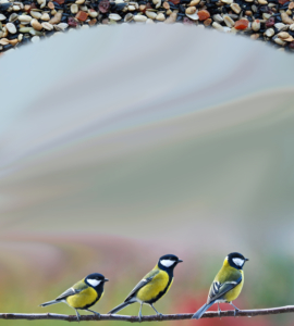 Birdseed Website Background Song Of America