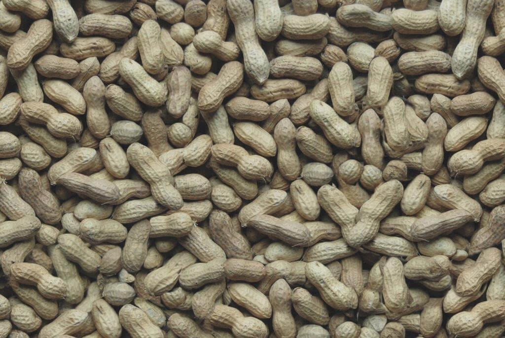 Whole Peanuts Shells