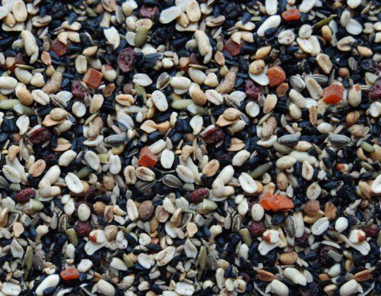 Woodpecker Wowie Seed